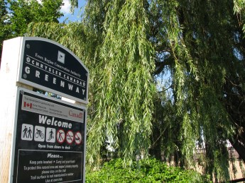 Chrysler Canada Greenway sign beside willow tree