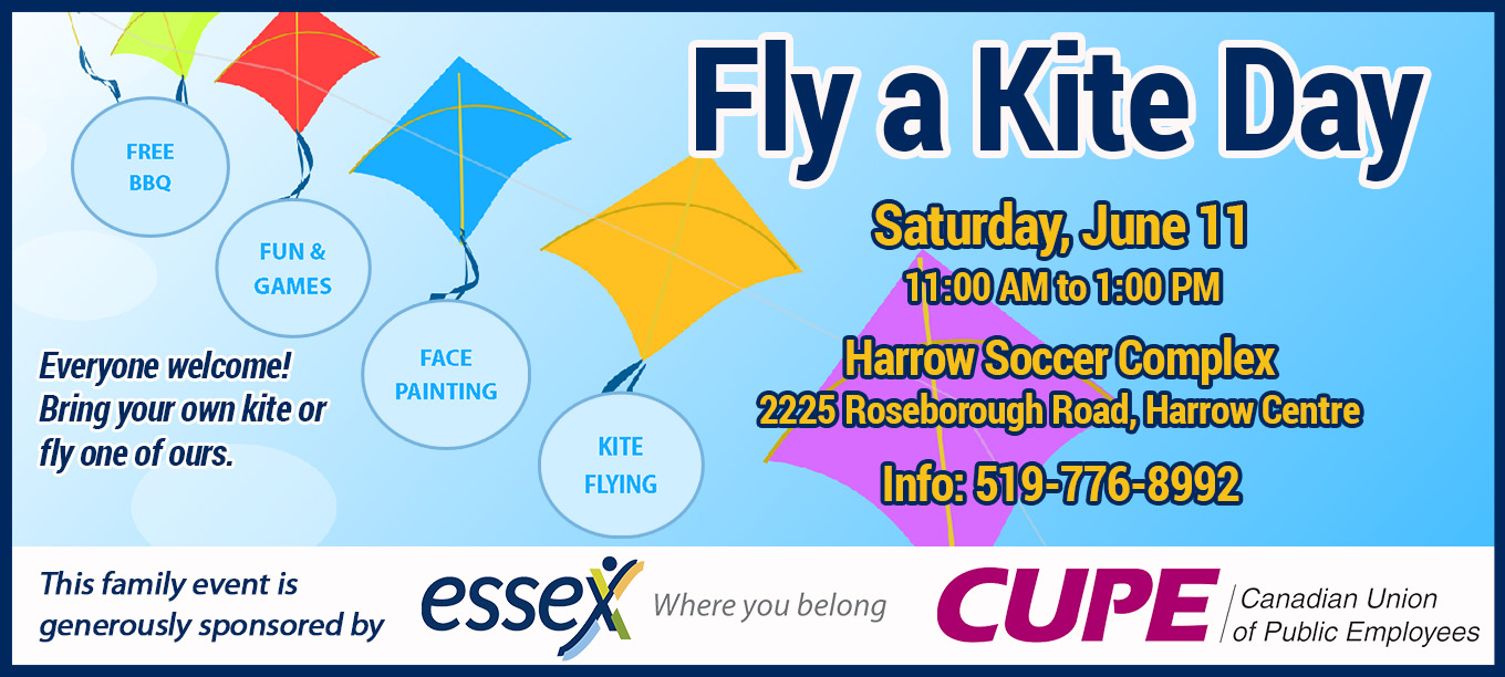 Fly a Kite Day Poster